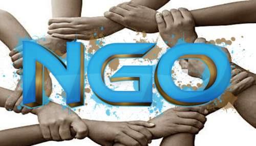 Start an NGO